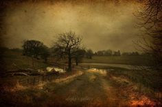 Landscape Photography by Alicja Rodzik  <3 <3