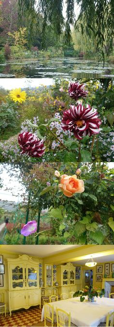 Monet's house and garden in Giverny is a perfect day trip from Paris, and brings out the artist in everyone - guaranteed