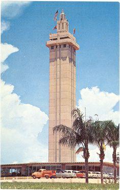 Vintage Florida Postcard - Clermont - Florida Citrus Tower Orange Groves