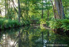 #Natur - Erlebnis #Spreewald www.spreewald-hotel-stern.de