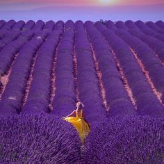 This is #Provence 💜