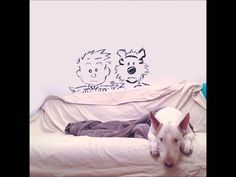 Bull Terrier Inspiración - Hilarious Creative Sketches! {Crazy About Cool}