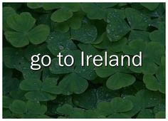 Ireland has always fascinated me. The history  and the beautiful castles. My dream is to go there someday.