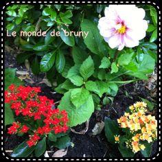 Sunday beauty sunday #1 | Bruny's blog