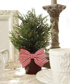 可爱圣诞树花盆