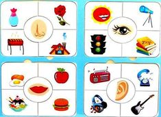 This page has a lot of free five senses cards printables for kıds,preschool,toddlers. Five senses flashcards Five senses flashcards for kıds Preschoolers five senses theme activities Five Senses Preschool, Senses Activities, Free Preschool, Preschool Worksheets, Kindergarten Activities, Classroom Activities, Learning Activities, Preschool Activities, English Worksheets For Kids