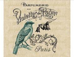 Vintage bird French ephemera Paris Digital download graphic image for iron on fabric transfer burlap decoupage cards pillows No. 503 via Etsy
