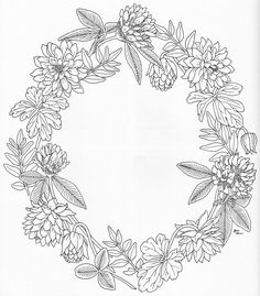 Harmony Of Nature Adult Coloring book Pg 1