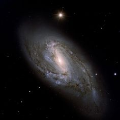 NGC 3627 (M 66) - This intermediate spiral galaxy is about 36 million light-years away in the constellation Leo. NGC 3627 is part of the famous Leo Triplet, a small group of galaxies that also includes NGC 3623 (M 65) and NGC 3268