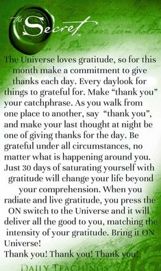 Law Of Attraction - Gratitude is peace - Are You Finding It Difficult Trying To Master The Law Of Attraction?Take this 30 second test and identify exactly what is holding you back from effectively applying the Law of Attraction in your life. Positive Thoughts, Positive Quotes, Motivational Quotes, Inspirational Quotes, Gratitude Quotes, Positive Life, Quotes To Live By, Life Quotes, Success Quotes