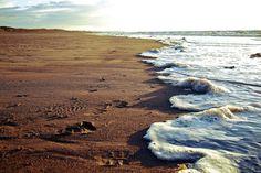 sand between your toes via Krisdon Tumblr #coastalliving