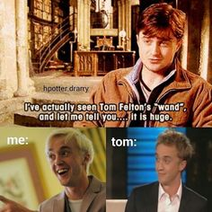 Don't pretend to be surprised, Tom #drarry #feltcliffe