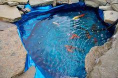 petit et sympa bassin de jardin avec des poissons