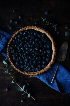 Blueberry Delight |