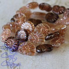 Neptune  Picasso Czech Nautilus Shell Beads