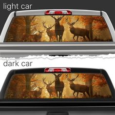 Mythology Phoenix Perforated Vinyl Decal Rear Window Car N FRST - Rear window hunting decals for trucksamazoncom truck suv whitetail deer hunting rear window graphic