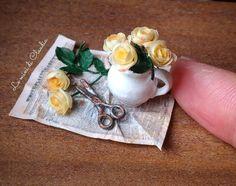 2017.11 Miniature Roses By Le Mini Di Claudia