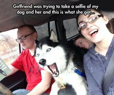 Animals sometimes feel uncomfortable with camera and don't want to be a part of your ridiculous selfie. These 51 funny animals who don't approve of your selfie addiction. Cute Funny Animals, Funny Cute, Funny Shit, Funny Dogs, The Funny, Cute Dogs, Hilarious, Funny Husky, Funny Stuff
