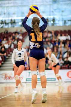 Girls Volleyball Shorts, Volleyball Poses, Female Volleyball Players, Volleyball Workouts, Women Volleyball, Beach Volleyball, Gymnastics Photos, Olympic Sports, Sporty Girls