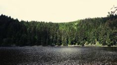 The Mummelsee
