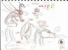 """Drawing Techniques direredemption: """"Not so much a 'hey you need to draw them like this' but this is just how i draw sandwings, seawings and skywings. Animal Sketches, Animal Drawings, Cool Drawings, Drawing Animals, Dragon Drawings, Drawing Techniques, Drawing Tips, Drawing Reference, Drawing Tutorials"""