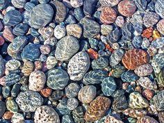 Superior Rock Collection - in water photo by Bill Pevlor of PopsDigital.com. #rocks #lakesuperior #stones