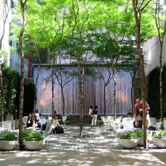 Paley Park was so named by former Chairman of CBS, William Paley, whose foundation funded the project as both a memorial to his father and a prototype for a new kind of privately-owned public space.