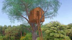 Construcción de una casa en un árbol.