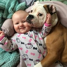 a dog and a baby