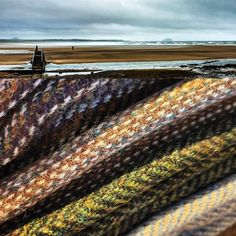 My latest #HarrisTweed delivery from Westend Cottage Tweeds arrived this morning and could not have reflected the colour and texture of my local landscape more perfectly on this glowering day...zoom in and you can see the Bass Rock and North Berwick Law in the distance beyond the Bridge to Nowhere...