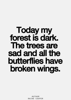Today my forest is dark. The trees are sad and all the butterflies have broken wings.