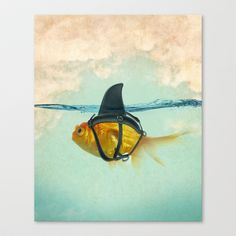 Buy Brilliant DISGUISE by Vin zzep as a high quality Canvas Print. Worldwide shipping available at Society6.com. Just one of millions of products…