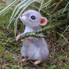 Еще фото Агаши С пшеничкой расстаться не пожелала. Мышка дом нашла.. #мышь #мышонок #мышка #игрушкиизшерсти #авторскиеигрушки #сухоеваляние #валяниешерсти #валянаяигрушка
