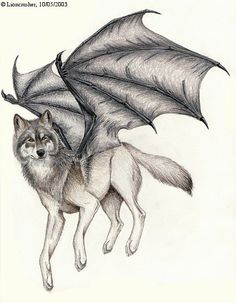 ✔ Anime Wolf With Wings Drawing Wings Sketch, Wings Drawing, Wolf Photos, Wolf Pictures, Anime Wolf, Magical Creatures, Fantasy Creatures, Dragon Wolf, Fantasy Wolf