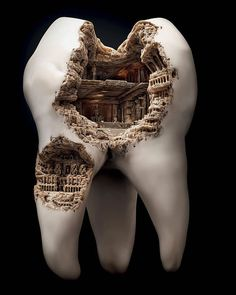 art sculpture Awesome nature amazing roman colosseum tooth macro photography