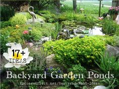 17+ Backyard garden pond ideas
