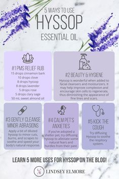 Hyssop essential oil has been used for centuries for its purifying and cleansing properties. Let's look at 10 ways to use hyssop essential oil. Hyssop Essential Oil, Young Essential Oils, Essential Oil Perfume, Essential Oil Diffuser Blends, Essential Oil Uses, Doterra Essential Oils, Cypress Essential Oil, Healing Oils, Young Living Oils
