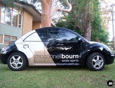 Real Estate, Volkswagen Beetle, Mcconnellbourn