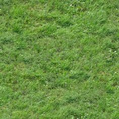 Seamless texture with green grass of inconsistent length and density.