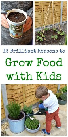 12 great reasons to grow food with kids - find out why gardening and growing your own food is such a great project for kids - Eats Amazing UK