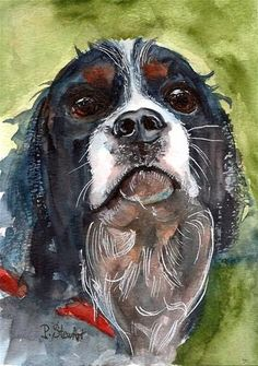 """""""Cavalier King Charles Spaniel Puppy Portrait"""" - by Penny Lee StewArt.... ~Watercolor, pen and ink"""