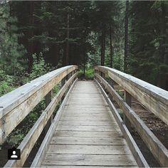 Shevlin Park in Bend, Oregon ---------------- @hannahbeauchemin   