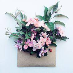 • Delicate Arrangements of Vibrant Flowers...