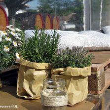 Allestimento aperitivo in cantina con piante aromatiche #pallet #pallets #diy | Wedding designer & planner Monia Re - www.moniare.com | Organizzazione e pianificazione Kairòs Eventi -www.kairoseventi.it
