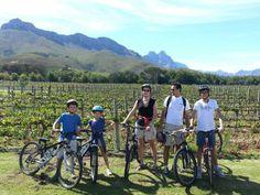 Cycling in Stellenbosch vineyards - Western Cape - South Africa Open Air Restaurant, Wine Tourism, Tourism Marketing, Cape Town, South Africa, Campaign, Country, Farms, Lp