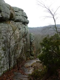 Garden of the Gods Observation Trail Shawnee National Forest, Southern Illinois, Plan Your Trip, Go Outside, Family Activities, Photo Ideas, Trail, Thing 1, Vacation