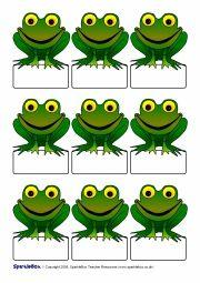 tiddalick the frog activities Preschool Classroom, Preschool Crafts, Classroom Decor, Self Registration, Frog Activities, Art For Kids, Crafts For Kids, Frog Illustration, Frog Theme