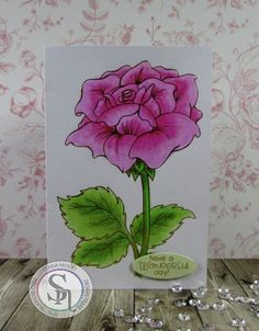 A6 card made with Colorista card blank & pencils Designed by Donna Mosley #crafterscompanion #spectrumnoir