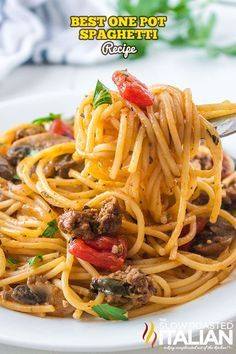 Plate of Best One Pot Spaghetti One Pot Spaghetti, Spaghetti Recipes, One Pot Pasta, Pasta Recipes, Beef Recipes, Cooking Recipes, Italian Pasta Dishes, Italian Spices, The Slow Roasted Italian