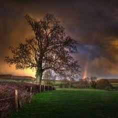 Beautiful nature + rainbow